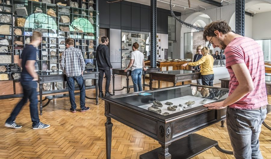 Lapworth Museum of Geology shortlisted for Art Fund Museum Of The Year 2017