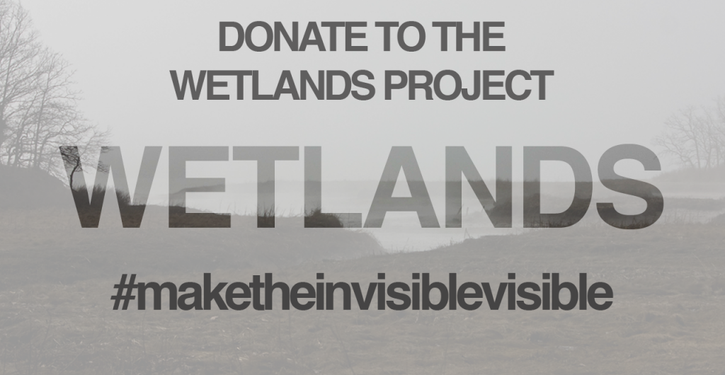 Help Reel Access make Wetlands a reality